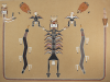 Fred Stevens Jr. Navajo Sandpainting