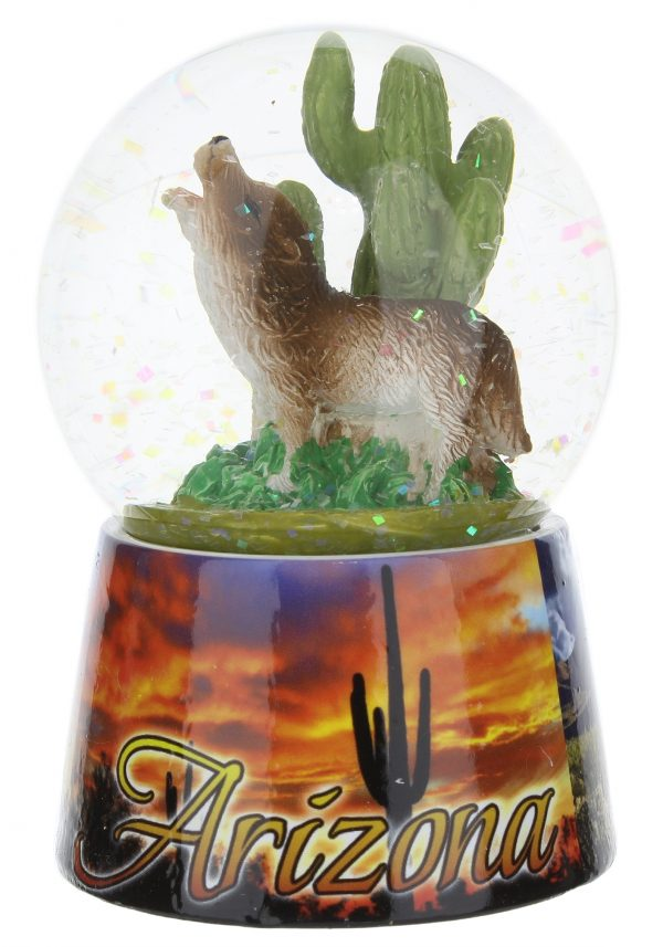 Arizona Photo Snowglobe