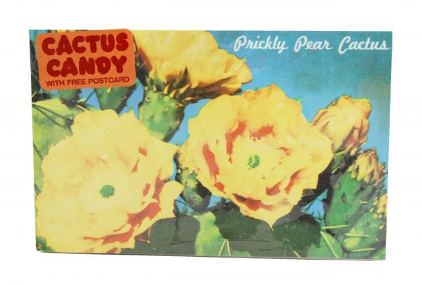 Postcard Box Cactus Candy